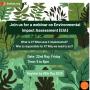 Webinar on the Environmental Impact Assessment (EIA)